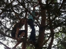 Anna & Lydia climbing a tree!